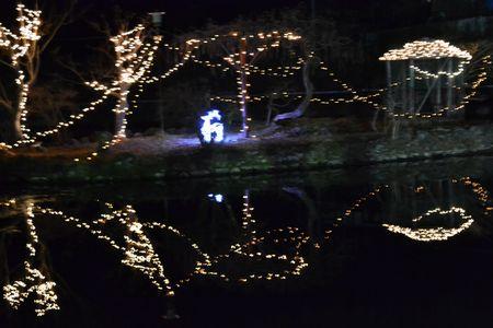 菱野温泉薬師池のイルミネーション