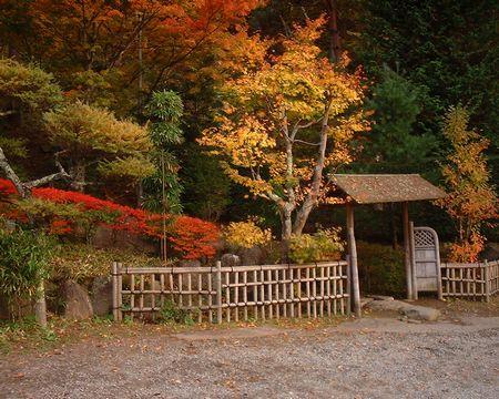 菱野温泉の紅葉