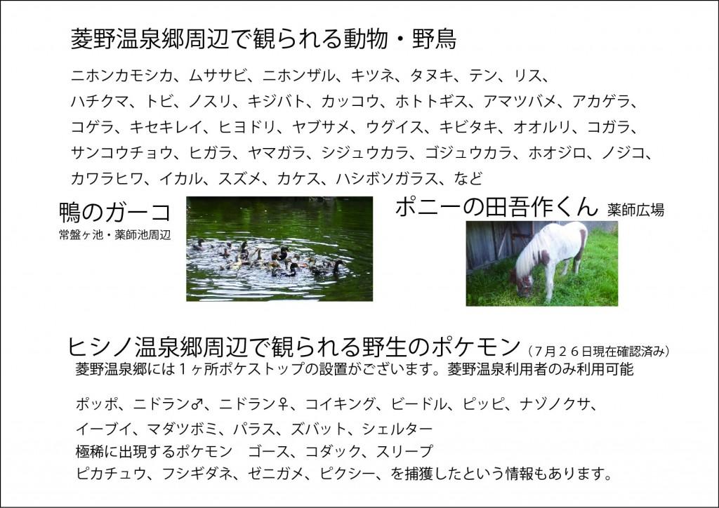 菱野温泉郷で観られる動物・野鳥・野生のポケモン